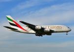 じーく。さんが、成田国際空港で撮影したエミレーツ航空 A380-861の航空フォト(写真)