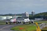 T.Sazenさんが、成田国際空港で撮影したタイ・エアアジア・エックス A330-343Xの航空フォト(飛行機 写真・画像)