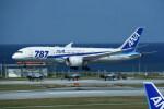 kumagorouさんが、那覇空港で撮影した全日空 787-8 Dreamlinerの航空フォト(写真)