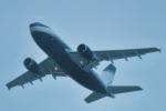 パンダさんが、成田国際空港で撮影したアラバスコ A310-304の航空フォト(飛行機 写真・画像)