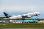 Cygnus00さんが、新千歳空港で撮影した全日空 777-281の航空フォト(写真)