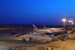 じゃりんこさんが、中部国際空港で撮影したタイ国際航空 787-9の航空フォト(写真)