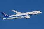 mameshibaさんが、羽田空港で撮影した全日空 787-9の航空フォト(写真)