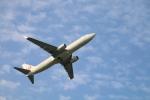 myoumyoさんが、福岡空港で撮影した日本航空 737-846の航空フォト(写真)