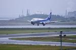 kodamax1975さんが、新潟空港で撮影したANAウイングス 737-5L9の航空フォト(写真)