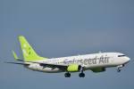 rail_airlineさんが、羽田空港で撮影したソラシド エア 737-81Dの航空フォト(写真)