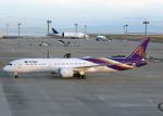 Bokuranさんが、中部国際空港で撮影したタイ国際航空 787-9の航空フォト(写真)