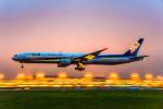 Cygnus00さんが、新千歳空港で撮影した全日空 777-381の航空フォト(写真)