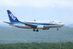 水月さんが、新千歳空港で撮影した全日空 737-781の航空フォト(写真)