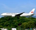 ザキヤマさんが、福岡空港で撮影した日本航空 777-246の航空フォト(写真)
