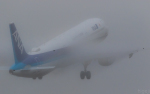 ひげじいさんが、庄内空港で撮影した全日空 A321-211の航空フォト(写真)