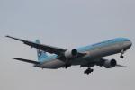 imosaさんが、羽田空港で撮影した大韓航空 777-3B5の航空フォト(写真)