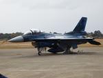 TUILANYAKSUさんが、岐阜基地で撮影した航空自衛隊 F-2Aの航空フォト(写真)
