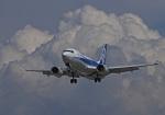 がいなやつさんが、福岡空港で撮影したANAの航空フォト(写真)