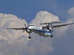 がいなやつさんが、福岡空港で撮影した全日空の航空フォト(写真)