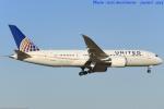 いおりさんが、成田国際空港で撮影したユナイテッド航空 787-8 Dreamlinerの航空フォト(写真)