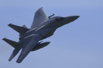 たままさんが、小松空港で撮影した航空自衛隊 F-15J Eagleの航空フォト(写真)