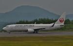 鉄バスさんが、広島空港で撮影した日本航空 737-846の航空フォト(写真)