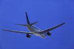 たままさんが、小松空港で撮影した全日空 777-281の航空フォト(写真)