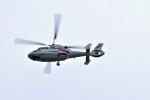 ヘリオスさんが、東京ヘリポートで撮影した東邦航空 AS365N2 Dauphin 2の航空フォト(写真)