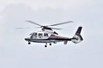 ヘリオスさんが、東京ヘリポートで撮影した読売新聞 AS365N2 Dauphin 2の航空フォト(写真)