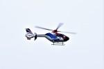 ヘリオスさんが、東京ヘリポートで撮影した毎日新聞社 EC135T1の航空フォト(写真)