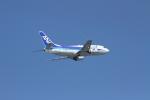 空旅さんが、那覇空港で撮影したANAウイングス 737-5L9の航空フォト(写真)