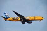 tamitanさんが、羽田空港で撮影した全日空 777-281/ERの航空フォト(写真)