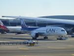 TUILANYAKSUさんが、ジョン・F・ケネディ国際空港で撮影したラタム・エアラインズ・チリ 787-8 Dreamlinerの航空フォト(写真)