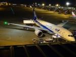ukokkeiさんが、中部国際空港で撮影した全日空 787-8 Dreamlinerの航空フォト(写真)