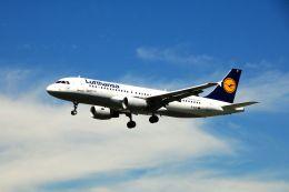 まいけるさんが、ロンドン・ヒースロー空港で撮影したルフトハンザドイツ航空 A320-214の航空フォト(写真)