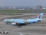 蒲田っ子さんが、羽田空港で撮影した中国東方航空 A330-343Xの航空フォト(写真)