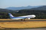 tsubasa787さんが、庄内空港で撮影した全日空 767-381の航空フォト(写真)
