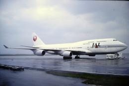 鯉ッチさんが、羽田空港で撮影した日本航空 747-446の航空フォト(写真)