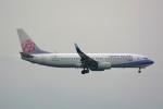 HISAHIさんが、福岡空港で撮影したチャイナエアライン 737-8ALの航空フォト(写真)