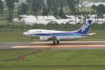 空旅さんが、仙台空港で撮影したANAウイングス 737-5L9の航空フォト(写真)