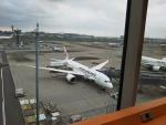 Reyさんが、羽田空港で撮影したボーイング 787の航空フォト(写真)