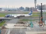 Reyさんが、羽田空港で撮影したANAの航空フォト(写真)
