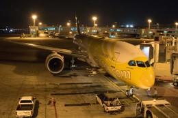 xingyeさんが、ドンムアン空港で撮影したスクート 787-8 Dreamlinerの航空フォト(飛行機 写真・画像)