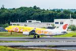 成田国際空港 - Narita International Airport [NRT/RJAA]で撮影された中国国際航空 - Air China [CA/CCA]の航空機写真