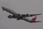 木人さんが、成田国際空港で撮影したイベリア航空 A340-642Xの航空フォト(写真)