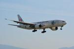 LEGACY-747さんが、福岡空港で撮影した日本航空 777-246の航空フォト(写真)