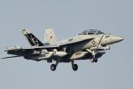 new_2106さんが、厚木飛行場で撮影したアメリカ海軍 EA-18G Growlerの航空フォト(写真)
