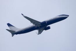 kooo_taさんが、成田国際空港で撮影したサウジアラビア企業所有 737-9FG/ER BBJ3の航空フォト(飛行機 写真・画像)
