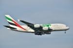 キハ28さんが、成田国際空港で撮影したエミレーツ航空 A380-861の航空フォト(写真)