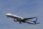 Fly Yokotayaさんが、伊丹空港で撮影した全日空 777-381の航空フォト(写真)