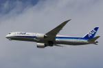 Fly Yokotayaさんが、伊丹空港で撮影した全日空 787-9の航空フォト(写真)