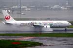 KAW-YGさんが、羽田空港で撮影した日本航空 767-346/ERの航空フォト(写真)