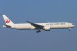 mameshibaさんが、成田国際空港で撮影した日本航空 777-346/ERの航空フォト(写真)