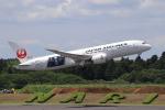 sumihan_2010さんが、成田国際空港で撮影した日本航空 787-8 Dreamlinerの航空フォト(写真)